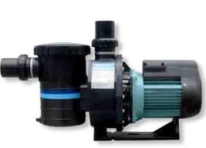 Насос с префильтром  30 м3/ч Emaux Opus SB30 2,2 кВт 220В купить в Уфе