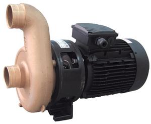 Насос для противотока Pahlen JET SWIM 2000 78 м3/ч 4,0 кВт 380 В (1302080) купить в Уфе
